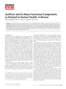 Jackfruit and Its Many Functional Components as Related to Human