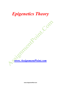 Epigenetics Theory www.AssignmentPoint.com In genetics