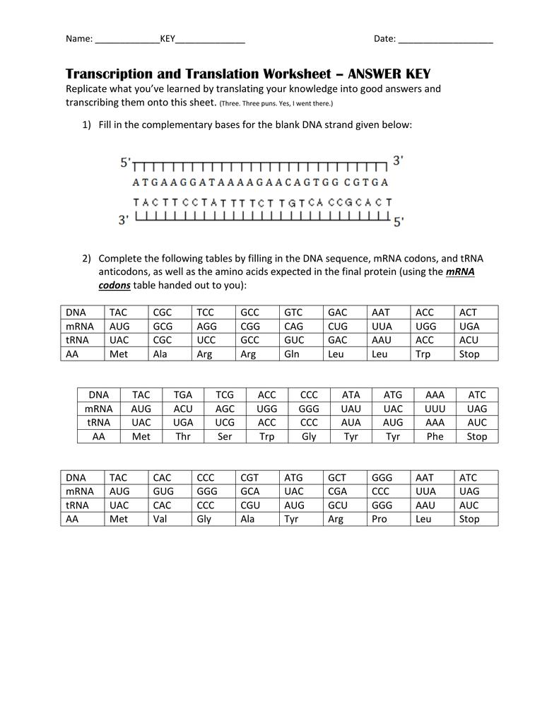 Name Date Transcription And Translation Worksheet Answer