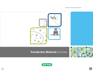 Transfection Methods Overview - Bio-Rad