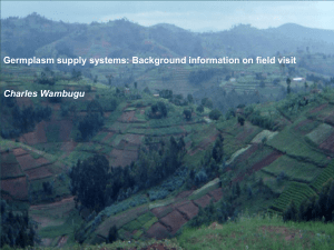Germplasm supply systems: Background information on field visit