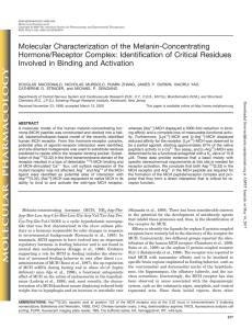 Molecular Characterization of the Melanin