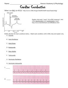 Cardiac Conduction Practice Worksheet