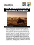 Draft Reintroduction Plan for Bison at RMA-NWR