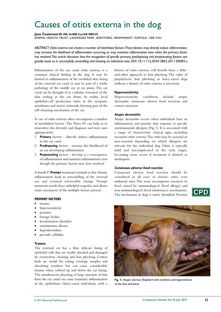 Causes of otitis externa in the dog