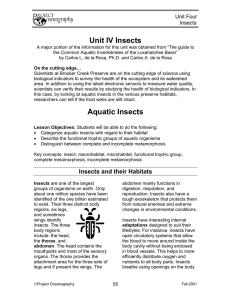 Unit IV Insects Aquatic Insects
