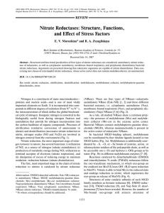 Nitrate Reductases: Structure, Functions, and Effect of Stress Factors