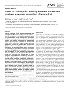 A role for `futile cycles` involving invertase and sucrose