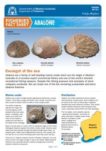 Abalone - Department of Fisheries