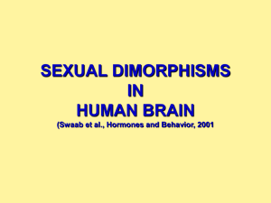 SEXUAL DIMORPHISMS IN HUMAN BRAIN (Swaab et al