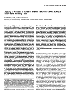 Activity of Neurons in Anterior Inferior Temporal Cortex during a