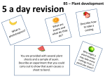 B5 5 a day - Science Revision