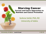 Current and Future Approaches to Nutrition and Cancer Prevention