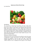 Importance of Sattvic Diet for Yoga By Vaishali Shah Introduction