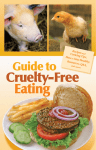 Cruelty-Free Eating Guide to Recipes