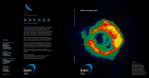 IRAM Annual Report 2012