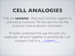 Presentation - Cell analogies
