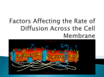 Factors Affecting the Rate of Diffusion Across the Cell Membrane