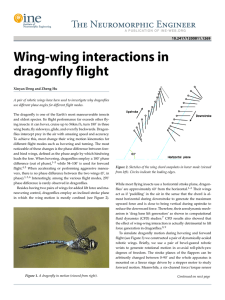 Wing-wing interactions in dragonfly flight
