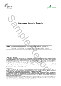 Sample Report Database Security Sample