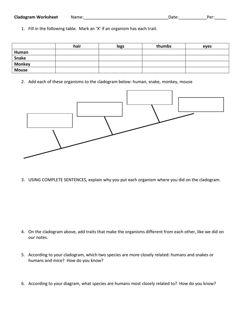 Worksheets Cladogram Worksheet Answers worksheets cladogram worksheet citysalvageanddesign free answers library download and samsungblueearth