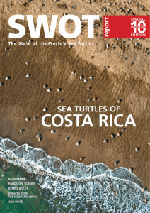 sea turtles of - Ecology Project International