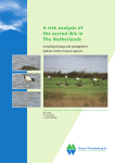 A risk analysis of the sacred ibis in the Netherlands