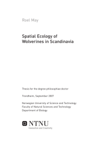 Spatial Ecology of Wolverines in Scandinavia