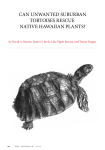 can unwanted suburban tortoises rescue native hawaiian plants?