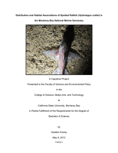 Distribution and Habitat Associations of Spotted Ratfish (Hydrolagus