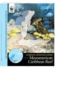Mesoamerican Caribbean Reef - the ERI Publication Repository