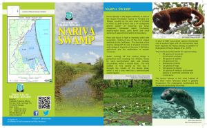 Nariva Swamp - Institute of Marine Affairs