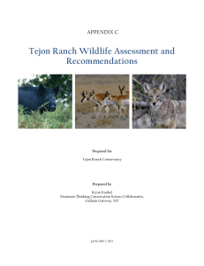 wildlife management practices