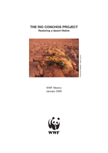 the rio conchos project