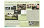 The Southern Water Snake (Nerodia fasciata): A New and