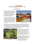 Landscaping for Color - UF/IFAS Extension Polk County