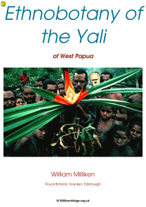 Ethnobotany of the Yali of West Papua