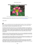 Daylily Problems Abound in - ifas.ufl.edu