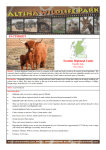 Scottish Highland Cattle Factsheet NEW.pub