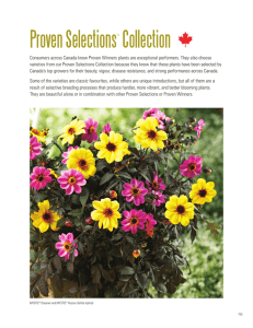 Proven Selections Collection