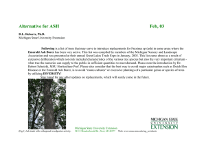 Alternative Selections for Problems in Tree Species