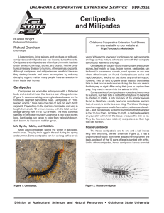 Centipedes and Millipedes - OSU Fact Sheets