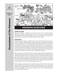 Ecosystems of The Bahamas