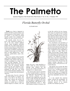 Florida Butterfly Orchid - Florida Native Plant Society