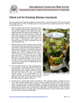 Check List for Growing Dionaea muscipula