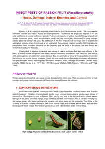 Insect pests of passion fruit (Passiflora edulis): Hosts