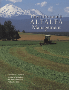 Intermountain Alfalfa Management - Siskiyou County Cooperative