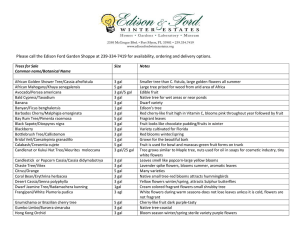 a list of trees available in the Garden Shoppe