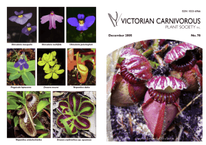 VCPS Dec05 Journal No 78 - Victorian Carnivorous Plant Society