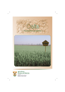 Production guideline - Department of Agriculture, Forestry and